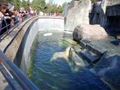 コペンハーゲン動物園